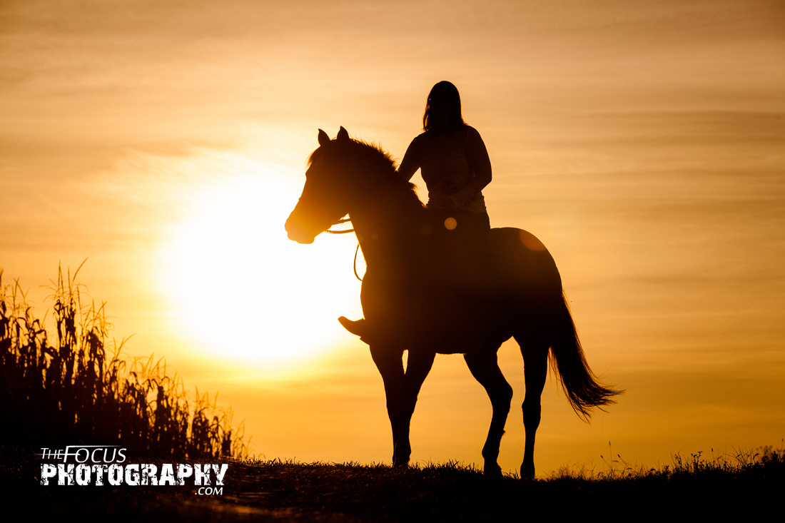 a girl and her horse in a corn field during sunset