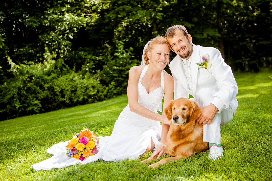 Bride and groom wedding day dog portrait central pennsylvania photographer rose finley the focus photography
