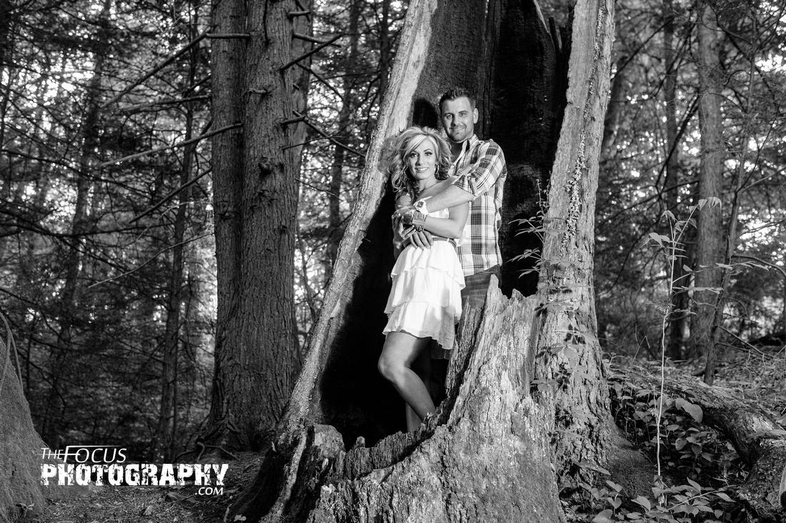 Couple portrait in tree stump