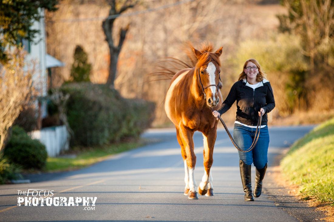 girl taking her horse for a walk