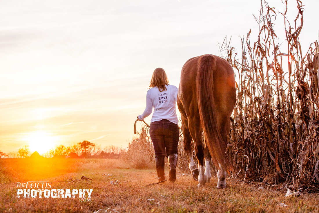 Girl walking her horse into the sunset