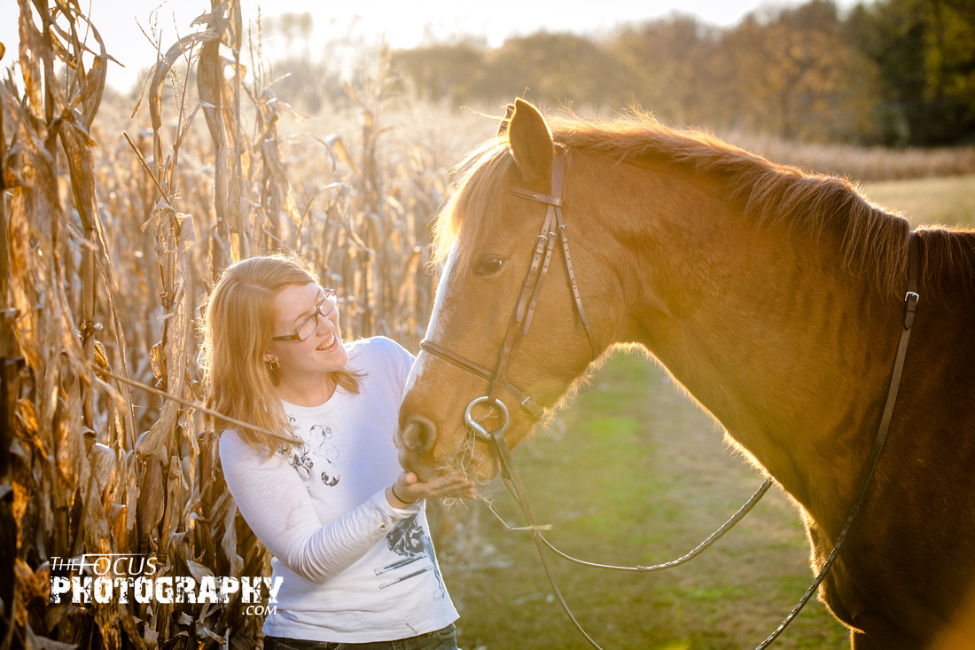 girl and horse walking in a corn field